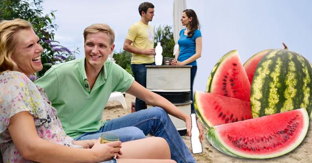 doehler-melon-flavours