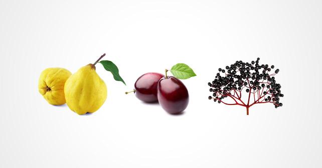 Sensient Flavors: Herbstfrüchte im Fokus
