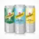Schweppes 330 ml Dose