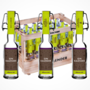 Winefactory Gin Adventskalender
