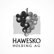 Hawesko Holding Logo
