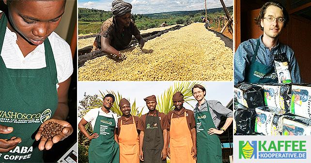 Teaser Kaffee-Kooperative