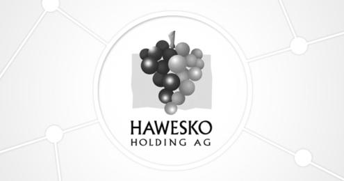 Hawesko Holding AG Logo People