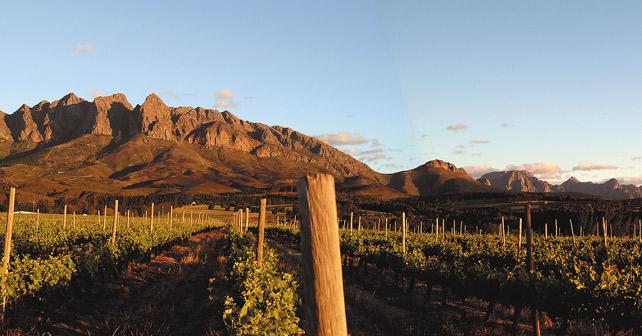 Reh Kendermann Napier Winery