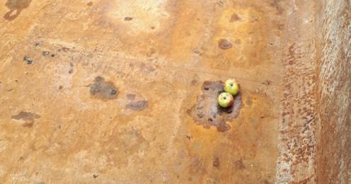 beckes bester Ernte Apfel