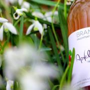 BRANDHOF Apfel Natur Gras
