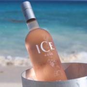 Rosé auf Eis