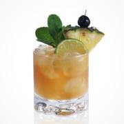 Rum Botucal Mai Tai