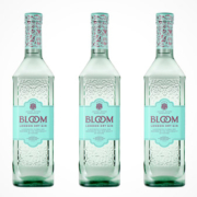 BLOOM London Dry Gin Flaschen