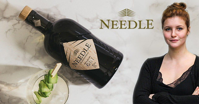 Needle Gin Interview Teaser