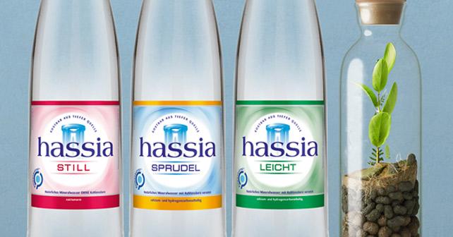 Hassia Flaschen Still Sprudel und leicht