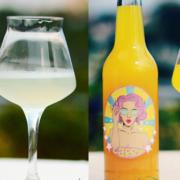 Hallo eVera Aloe Vera-Limonade und Cärry Currylimonade