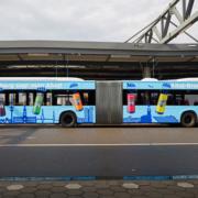 Ahoj Brause Bus