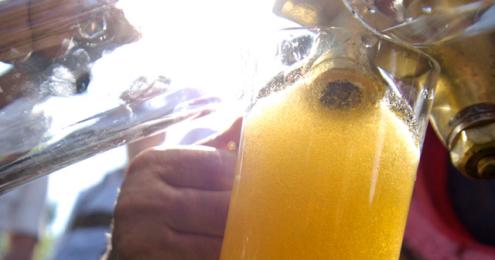 Bierglas, welches gerade gefüllt wird