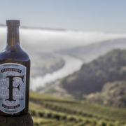 ferdinand saar dry gin borco