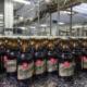 Wernesgrüner Steini Flaschen