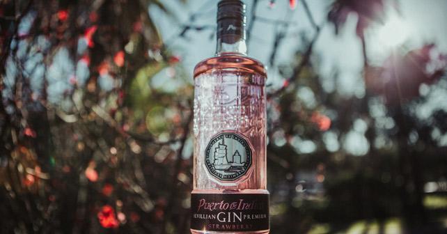 Puerto De Indias Strawberry Gin Flasche