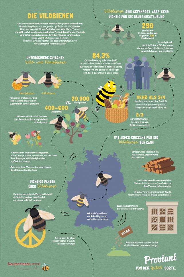 Bienen Proviant
