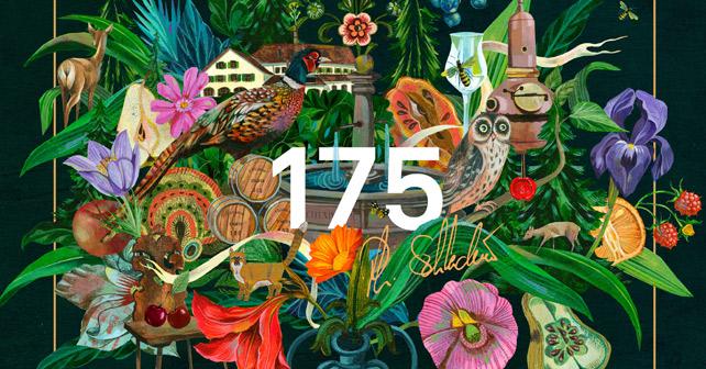 Schladerer 175