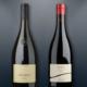 Kellereien Terlan und Andrian Pinot Noir