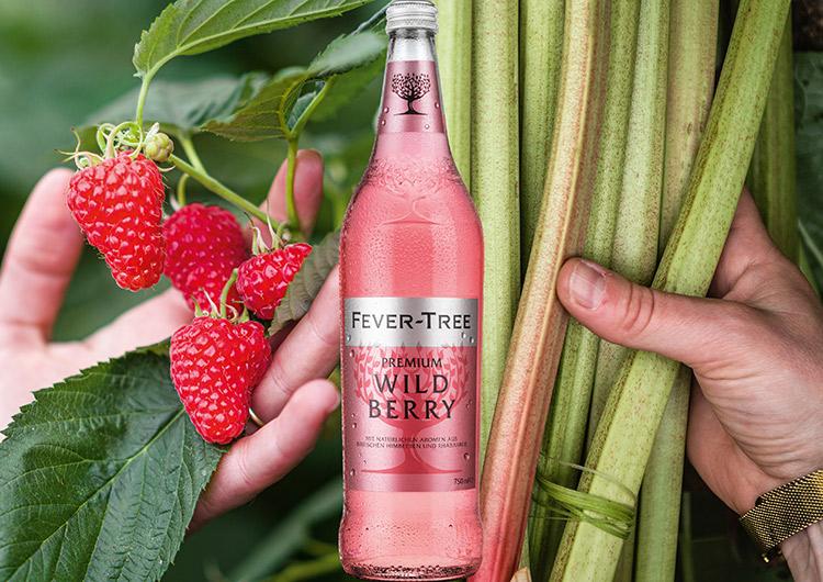 fever tree wild berry