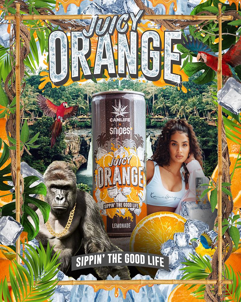softdrink juicy orange