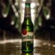 Pilsner Urquell Flasche