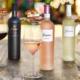 freixenet wine collection